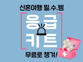 2020년 새해도 안전여행★구급키트 무료증정!
